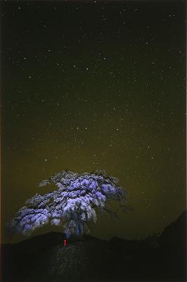 2011_11_25_1