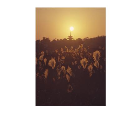 《斑鳩の里 法隆寺の落陽》 小川光三撮影 ©飛鳥園