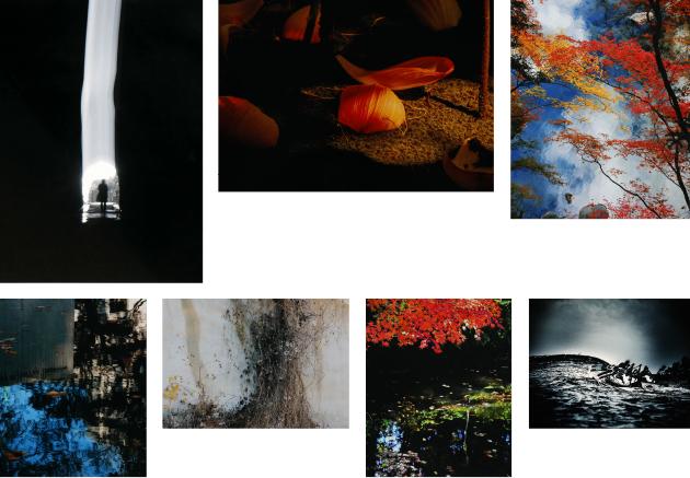 201912写真コンテスト入賞作品